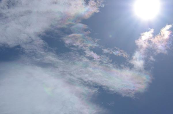端午節的純陽之氣