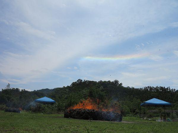 煙供法彩虹光6